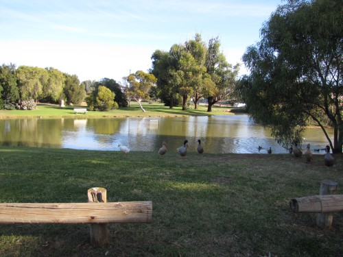 Victoria Park, Peterborough, South Australia