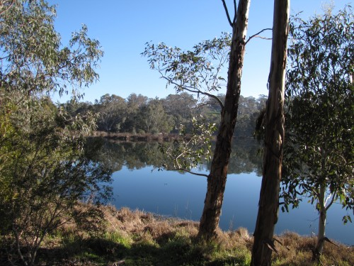 Laratinga Wetlands, Mt Barker, South Australia