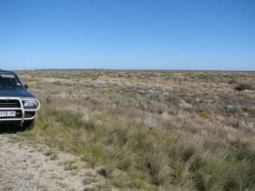 Hay Plains, New South Wales