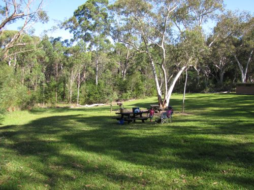 Picnic at Lane Cove National Park